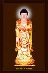 Phật ADIDA 014 (ép laminater đổ bóng)