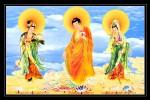 Phật tam thánh 911 ( ép foam cán bóng )